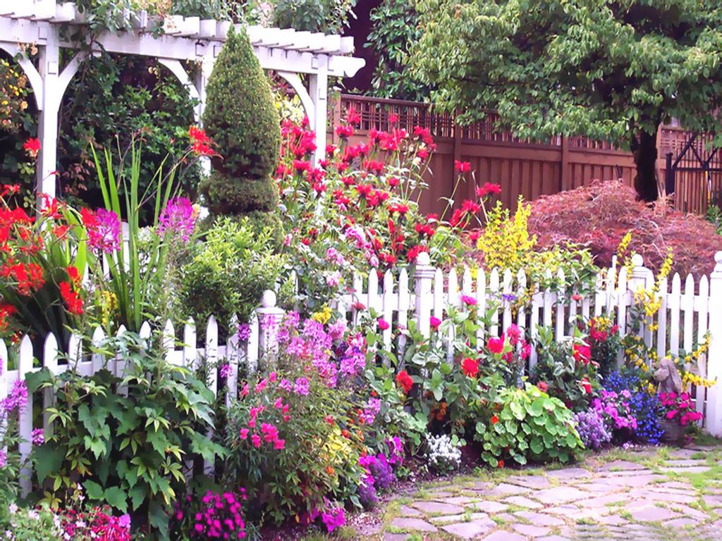 обои на рабочий стол цветы в саду на даче № 225523 загрузить
